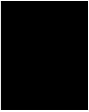 Stratalogo Medium